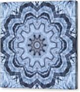 Ice Patterns Snowflake Canvas Print