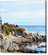 Ice Plant Along The Monterey Shore 2 Canvas Print