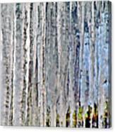 Ice Sickle Curtains Canvas Print