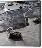 Ice Snakes Canvas Print
