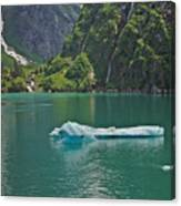 Ice Tracy Arm Alaska Canvas Print