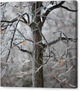 Ice Tree Canvas Print