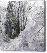 Ice Wonderland Canvas Print