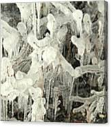 Ice Works Canvas Print