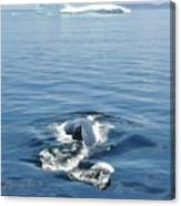 Iceberg And Humpback Canvas Print