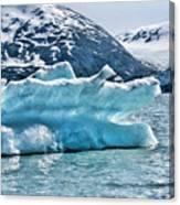 Iceberg Glacier Alaska  Canvas Print