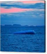 Iceberg Sunset Canvas Print