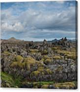 Icelands Mossy Volcanic Rock Canvas Print