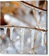Icicles And Bokeh Canvas Print