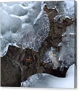 Icy Creek In Pocono Mountains Canvas Print