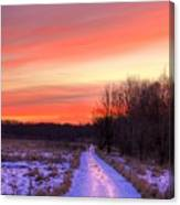 Icy Path Canvas Print