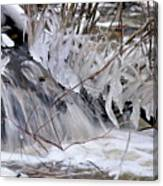 Icy Spring Canvas Print