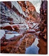 Icy Stillness Canvas Print
