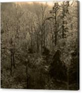 Icy Trees In Sepia Canvas Print