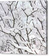 Icy Winter Scene Canvas Print