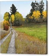 Idaho Backroad Autumn Canvas Print