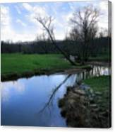 Idyllic Creek Canvas Print