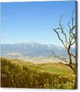 Idyllwild Mountain View With Dead Tree Canvas Print