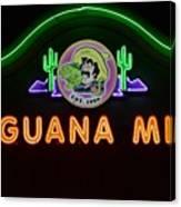Iguana Mia Canvas Print