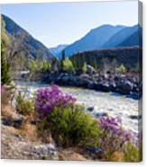 Ilgumensky Rapids At Spring Time. Altay Mountains Canvas Print