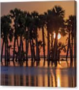 Illuminated Palm Trees Canvas Print
