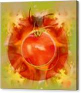 Illustration Of Tomato Canvas Print