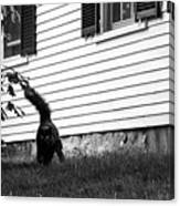 I'm Watching You Black And White Canvas Print