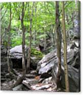 Image Included In Queen The Novel - Rocks At Smugglers Notch Canvas Print