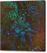 Imagination Leafing Out Canvas Print