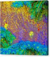 Imagining Hawaii Canvas Print