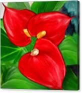 Immeasurable Beauty- Anthurium Paintings Canvas Print