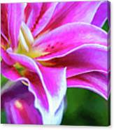 Immerse Yourself - Paint Canvas Print