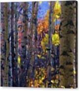 Impression Of Fall Aspens Canvas Print