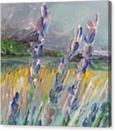 Impressionism Fantasy Field Canvas Print