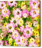 Impressionist Floral Ix Canvas Print