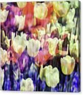 Impressionist Floral Xxxvii Canvas Print