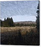 Impressionist Meadow Canvas Print