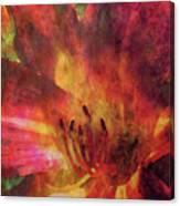 Impressionist Vibrant Daylily 1208 Idp_2 Canvas Print