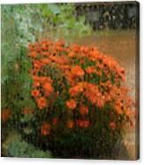 Impressionistic Mums Canvas Print