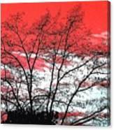 Impressions 6 Canvas Print