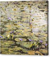 Impressions Of Giverny Canvas Print