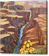 In All God's Glory Canvas Print