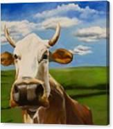 In Pasture Canvas Print
