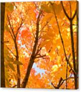 In The Autumn Mood  Canvas Print
