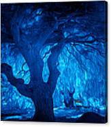 In The Blues Canvas Print