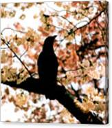 In The Cherry Tree Canvas Print