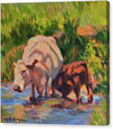 In The Creek Canvas Print
