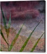 In The Distance Is The Season Canvas Print