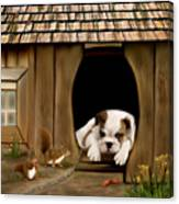 In The Dog House Canvas Print