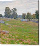 In The Fields Canvas Print